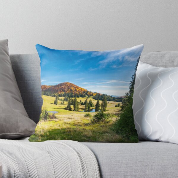 pond among spruce trees Throw Pillow