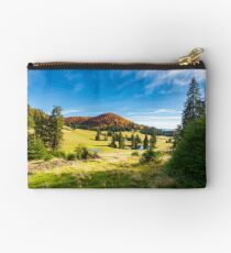 pond among spruce trees Studio Pouch