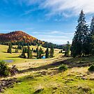 beautiful autumnal landscape in mountains by mike-pellinni