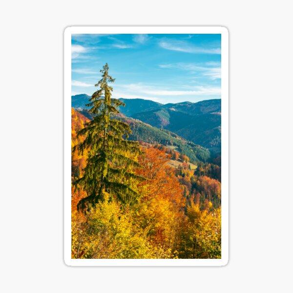 beautiful autumn background Sticker