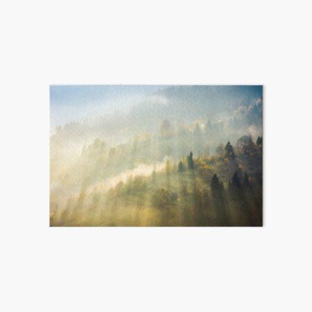 beautiful nature scene in fog Art Board Print