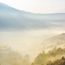 valley in fog at sunrise by mike-pellinni