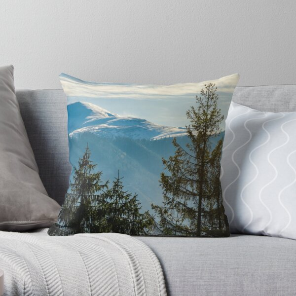 lovely november countryside background Throw Pillow