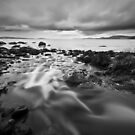 Returning to the Source - Taroona, Tasmania by Liam Byrne