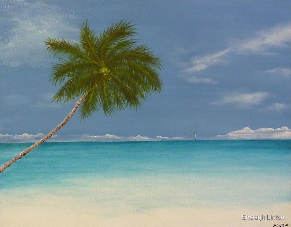 Jamaican Blue by Shelagh Linton