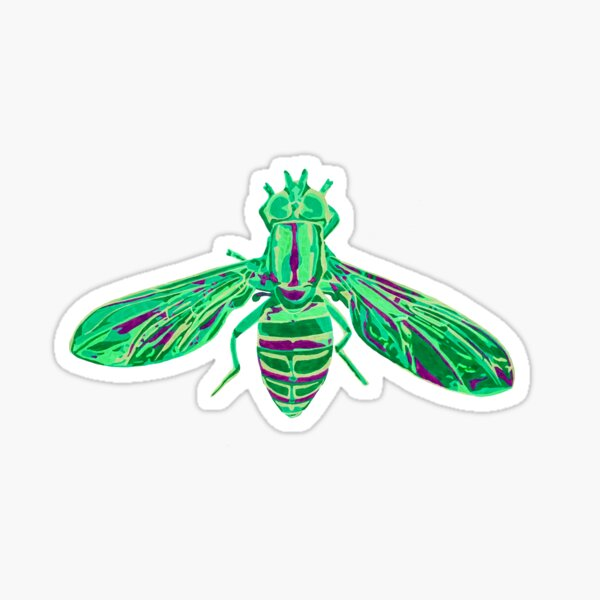 Syrphid Fly Sticker