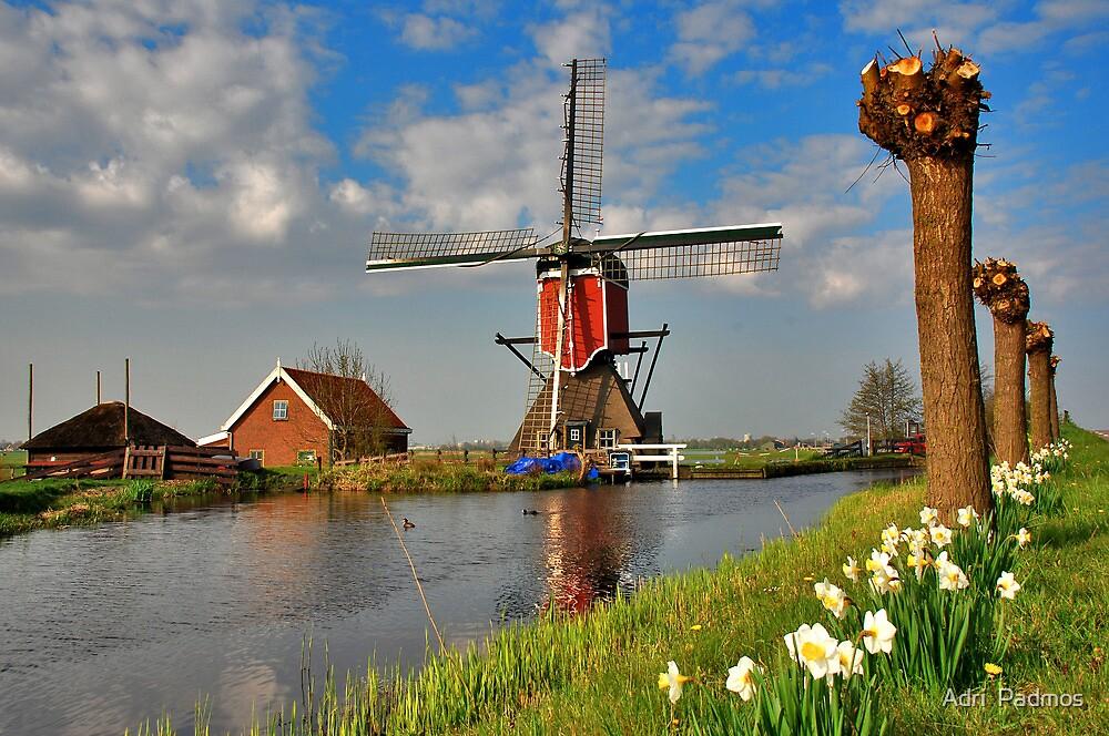 Dutch Mill in Oud Ade by Adri  Padmos
