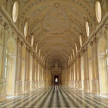 Venaria Palace by TalBright