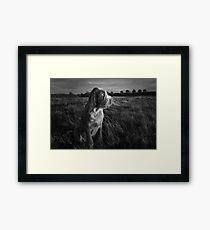 Italian Spinone Puppy Sunset Portrait Framed Print