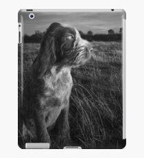 Italian Spinone Puppy Sunset Portrait iPad Case/Skin