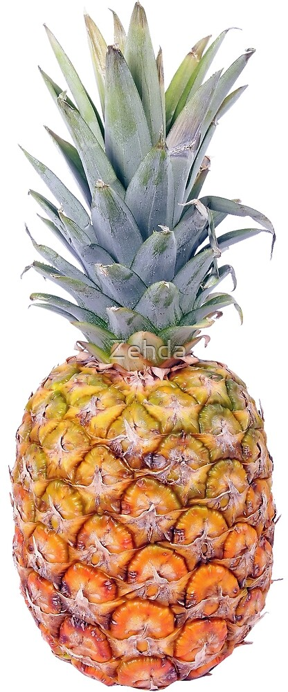 Stylish Pineapple by Zehda