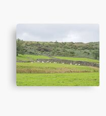 Essence Of Yorkshire Canvas Print