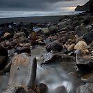 Swann Beach, West Coast. by Michael Treloar