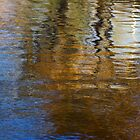 On Golden Pond by Kirstyshots