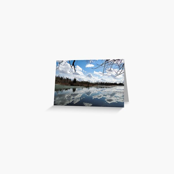 Red Deer Reflections Greeting Card