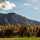 Fall Goldspires Adorning Ogden Park by Len Bomba