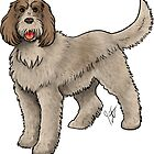 Spinone Italiano by Jennifer Stolzer