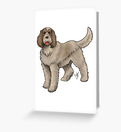 Spinone Italiano Greeting Card