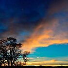 Ode to A New Mexico Sunset 1 by Debby Pueschel