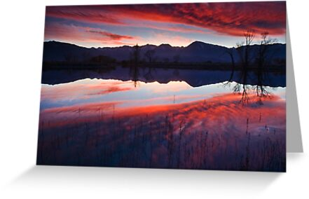 Eastern Sierra Reflection by Nolan Nitschke