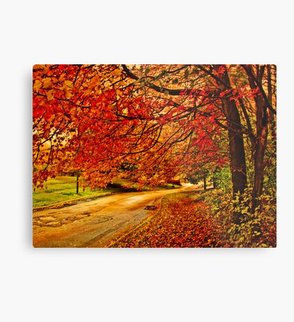 Autumn track Metal Print