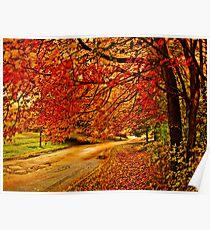 Autumn track Poster