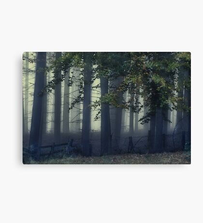 Fog On The Chase Canvas Print