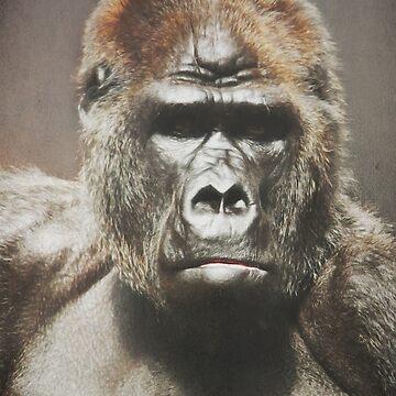 Gorilla (reworked) by DeniseAbe