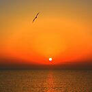 Sicilian sunset over Trapani by Christine Oakley