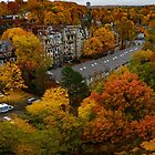 Brookline fall panorama by LudaNayvelt