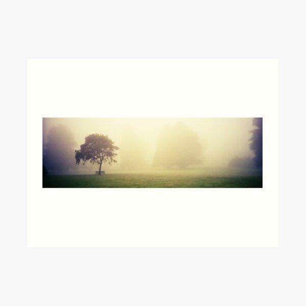 Kilkenny Fog Art Print