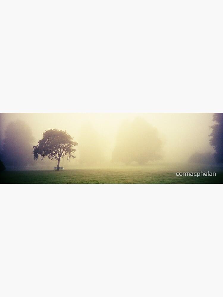 Kilkenny Fog by cormacphelan