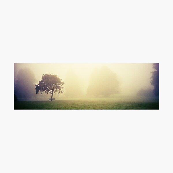 Kilkenny Fog Photographic Print