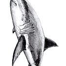 «Gran tiburón blanco para pescadores, buzos y amantes del océano.» de Chloé Yzoard