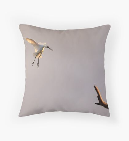 Royal Spoonbill Throw Pillow