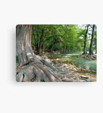 The Old Man and the River Canvas Print