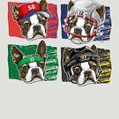 Bawstin Four Sports Dogs Boston  by MudgeStudios