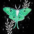 Luna Moth  by ARiAillustr