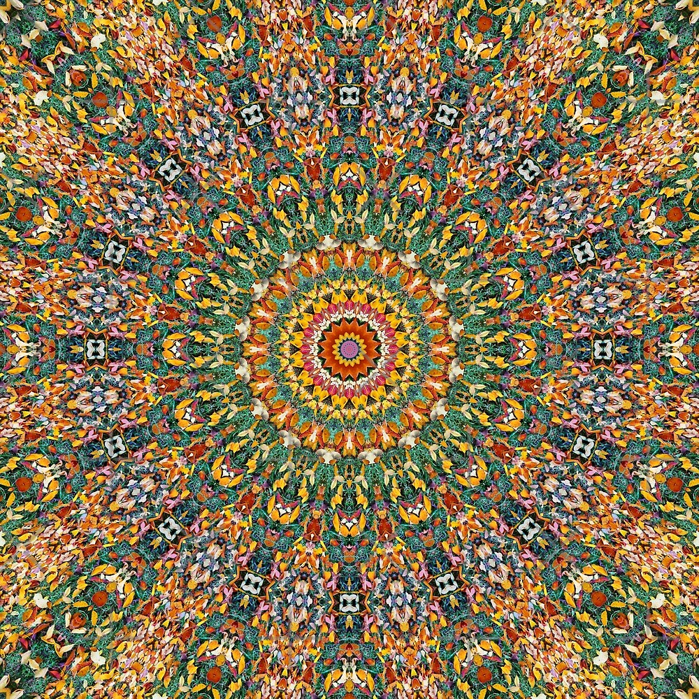 Kaleidoscope Mandala by Kelly Dietrich