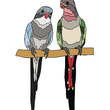 Princess Parrots by nolessjess