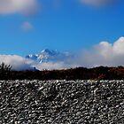 New Zealand by Imi Koetz