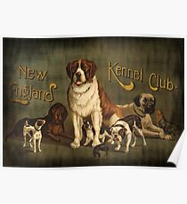 New England Kennel Club Vintage painting Poster