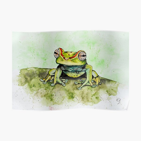 Canal Zone Treefrog Poster