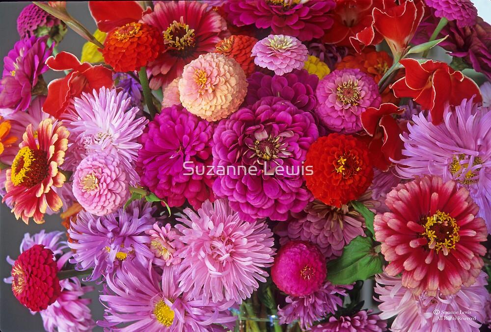 Fiesta Flora, September First  #4 by Suzanne Lewis