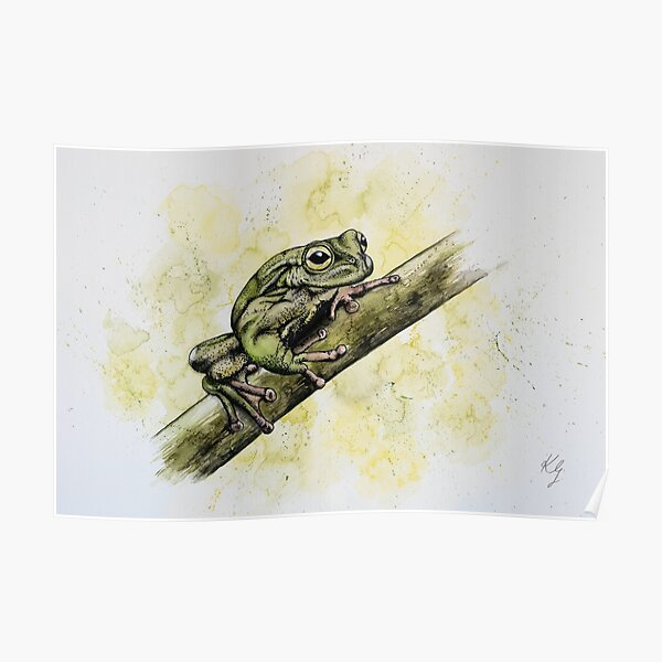 Exquisite Spike-thumbed Frog Poster