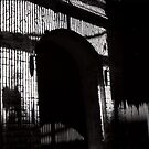 alcatraz by elisabeth tainsh