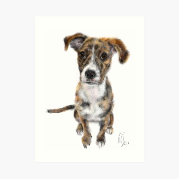 A Very Happy Puppy Dog Pooch Art Print
