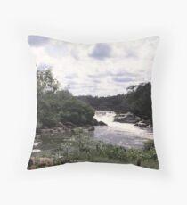 an unbelievable Suriname landscape Throw Pillow