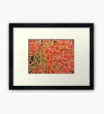 Red Ball-(Floral Macro) Framed Print