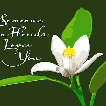 Someone in Florida Loves You by DougPop
